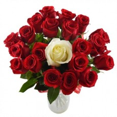 Bouquet of Roses The One 40 cm. Red with white middle. Variable quantity.