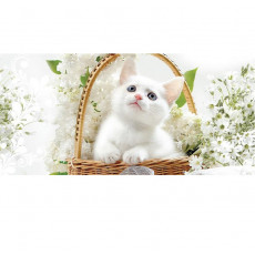 Card White kitten 10x21 cm