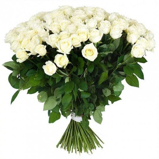 101 white long rose 70 cm