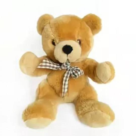 Teddy 25 cm (only in Riga)