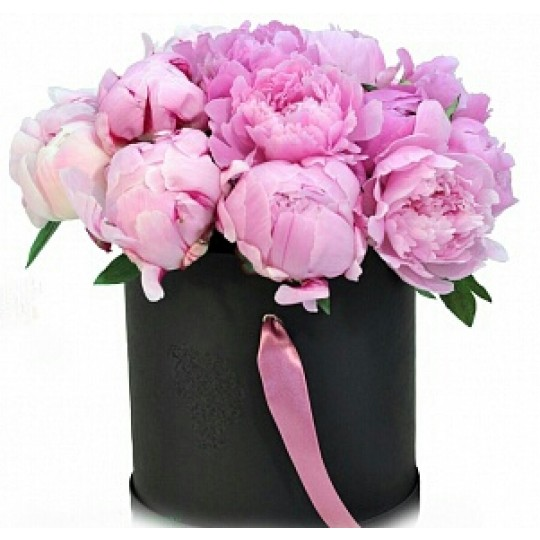 Peonies in black box (only in Riga)