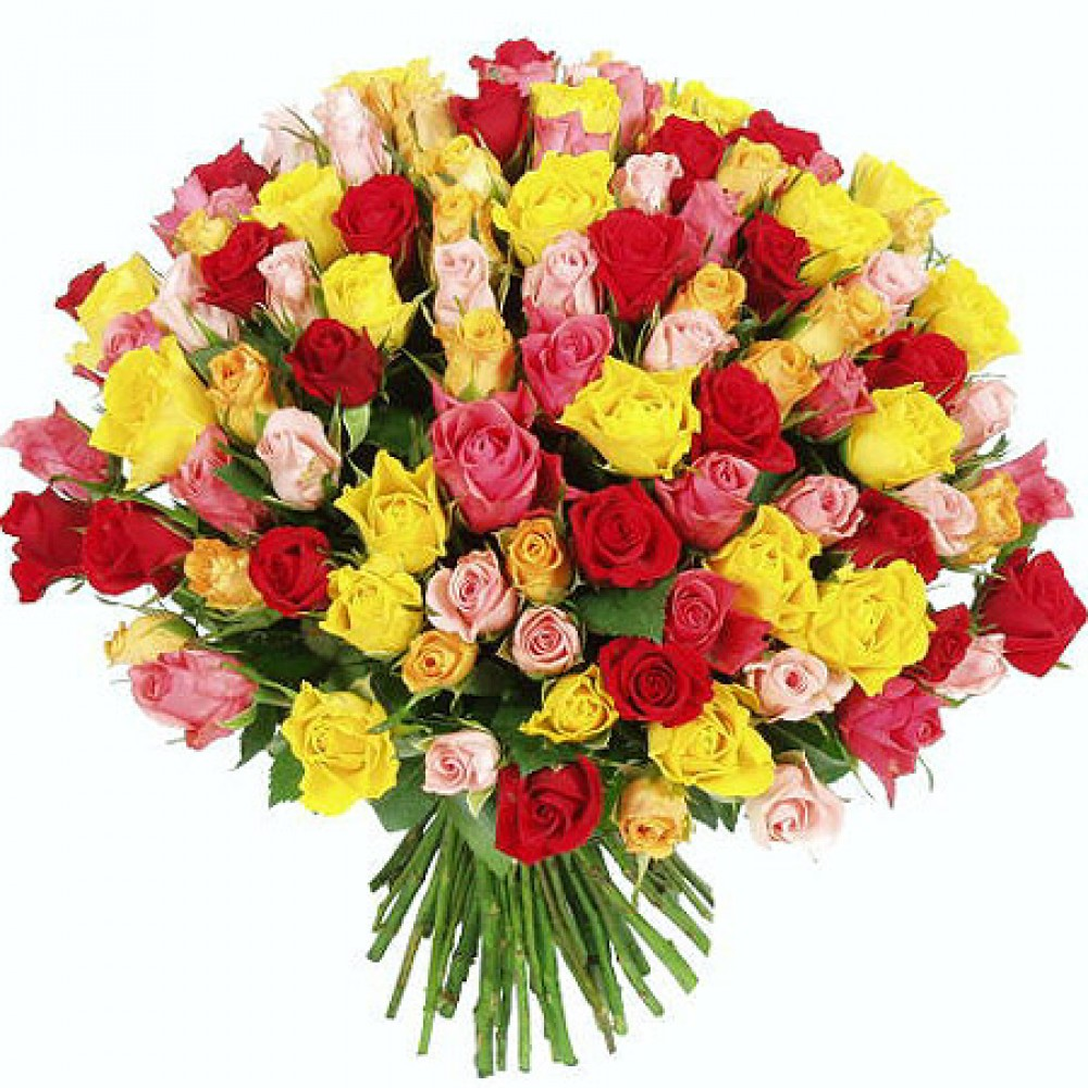 101 Rose bouquet of different colors. Red, white, pink, yellow, roses