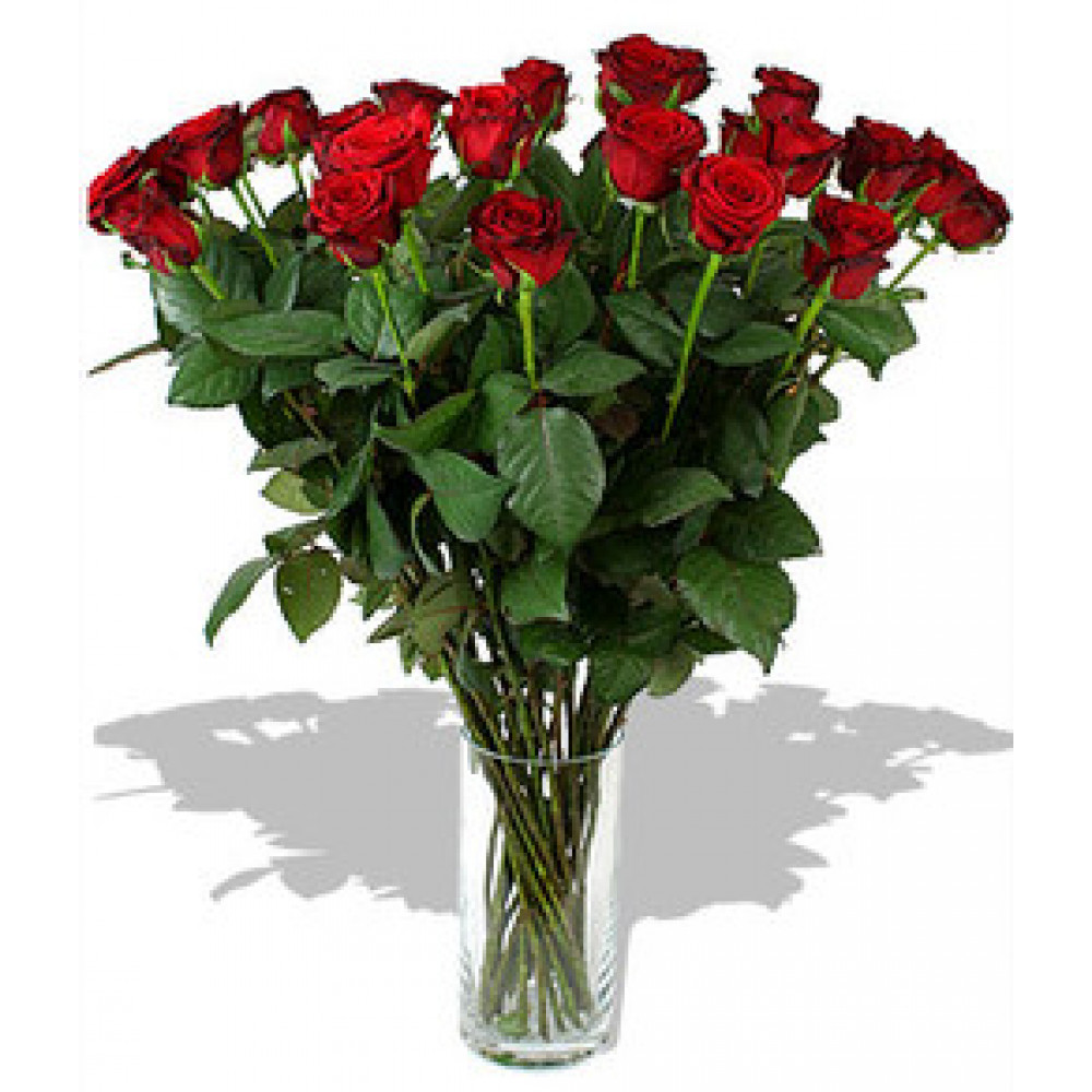 Long red roses 70 cm (Select the number of flowers)