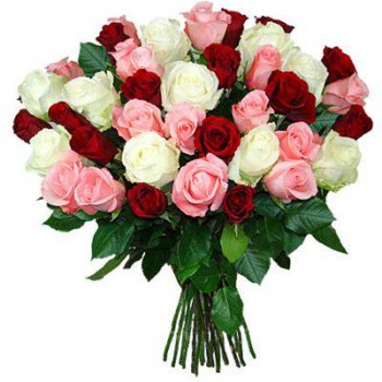 51 red, pink and white rose 50 cm