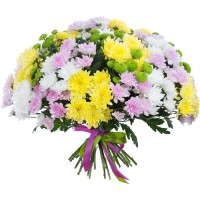 Multi colored chrysanthemums bouquets